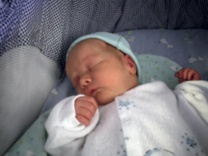 Griffin closeup asleep.JPG